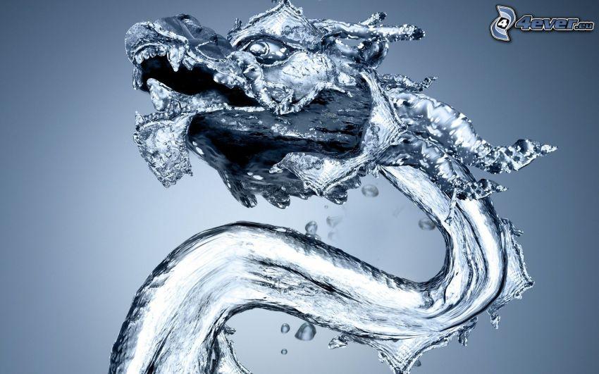 Wasserdrache