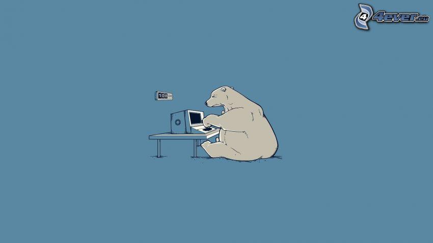 Eisbär, Computer