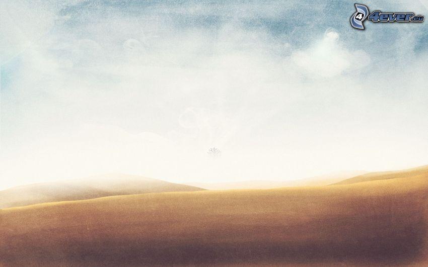 Feld, Himmel
