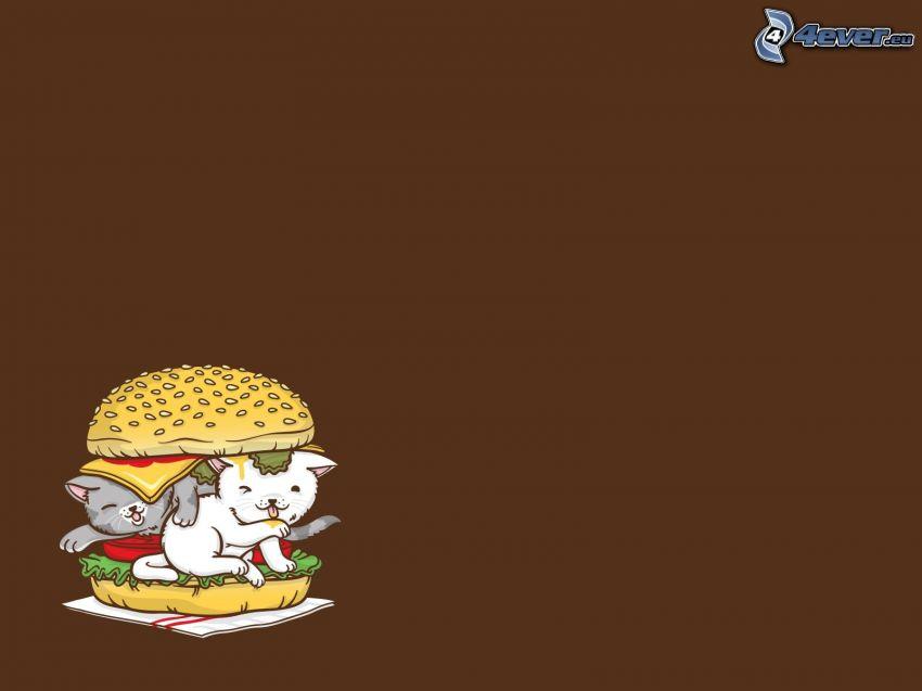 hamburger, Katzen