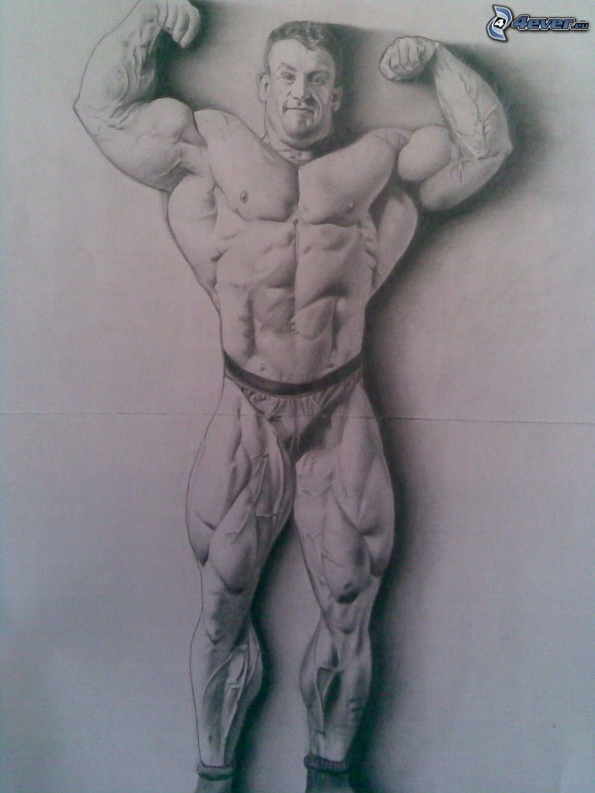 Dorian Yates, muskulöser Kerl, Muskeln