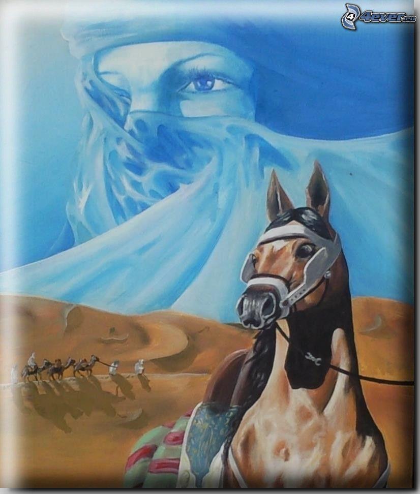Pferd, Gesicht