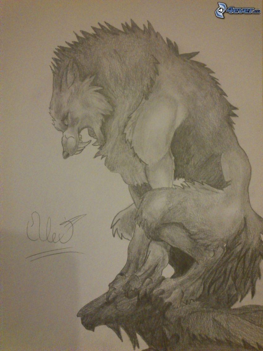 Werwolf, gezeichneter Wolf