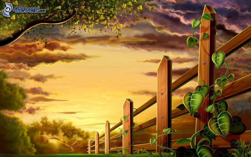Holzzaun, Abendhimmel, Bäume