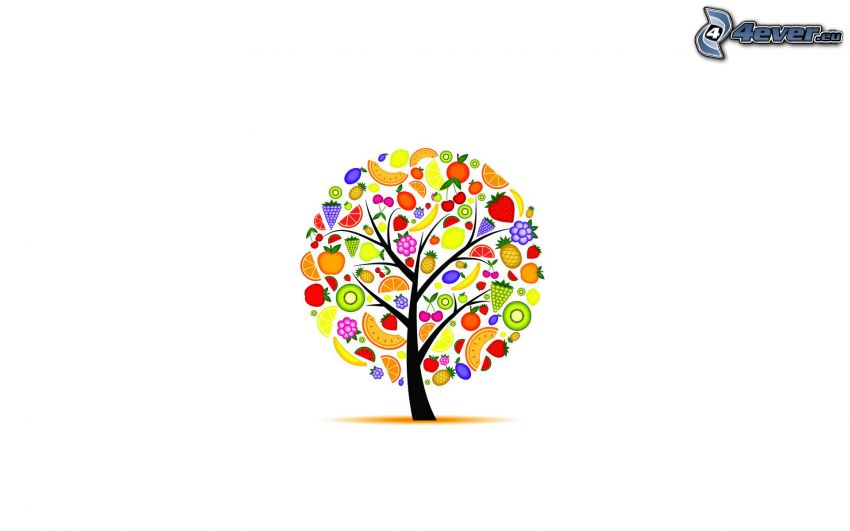 Karikatur-Baum, Obst