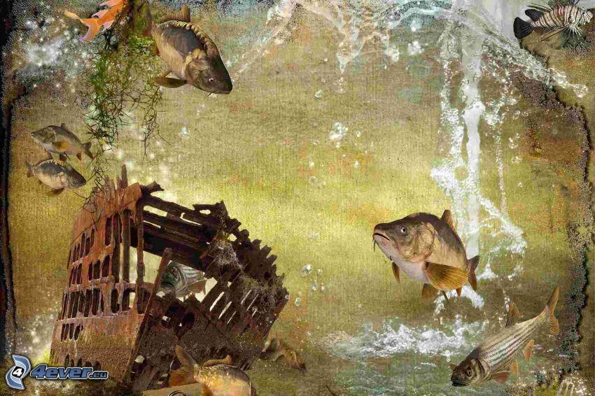 Karpfen, Schiffbruch, Malerei
