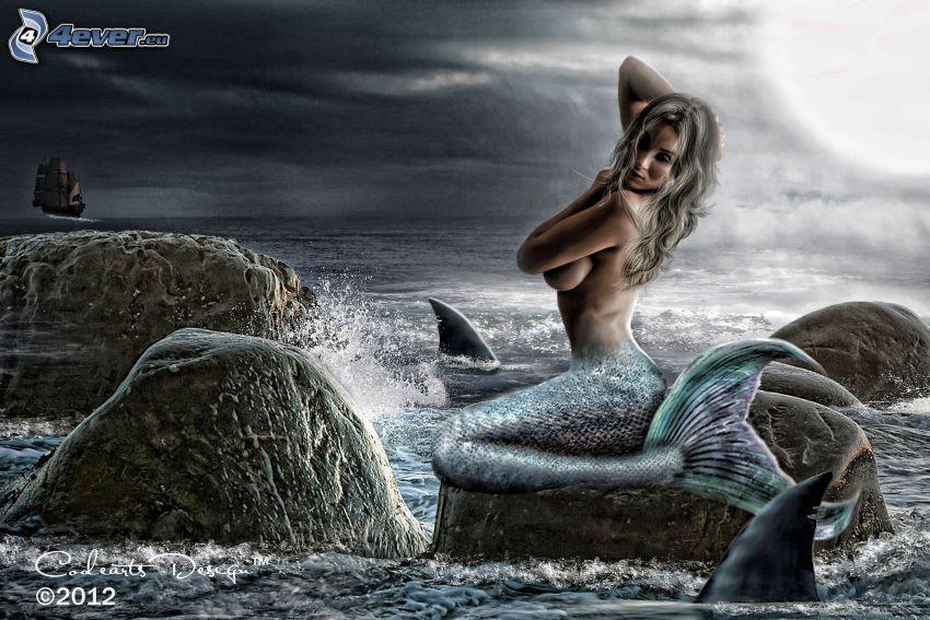 Meerjungfrau, Meer, Felsen, Sonne