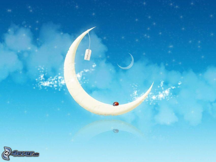 Mond, Wolken, Marienkäfer
