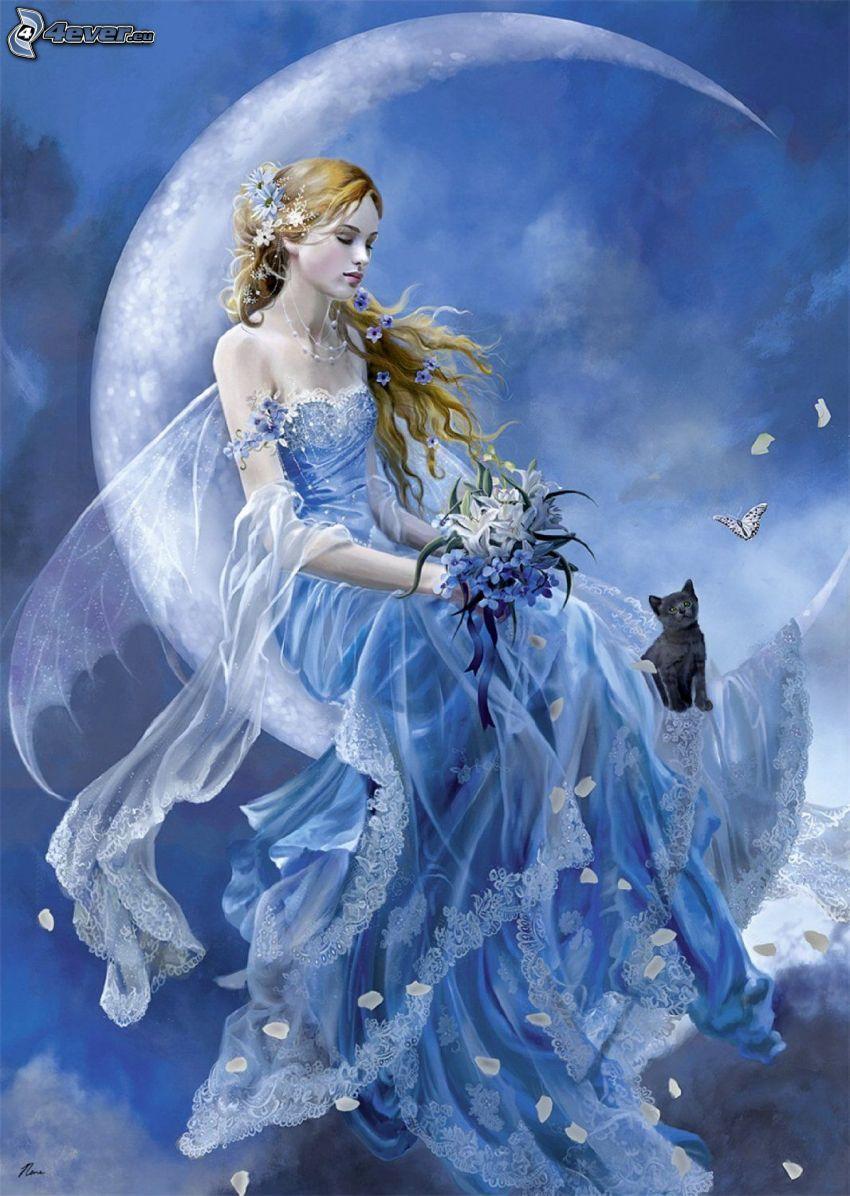 Nachtfee, Mond, Blumensträuße, Katze, Schmetterling