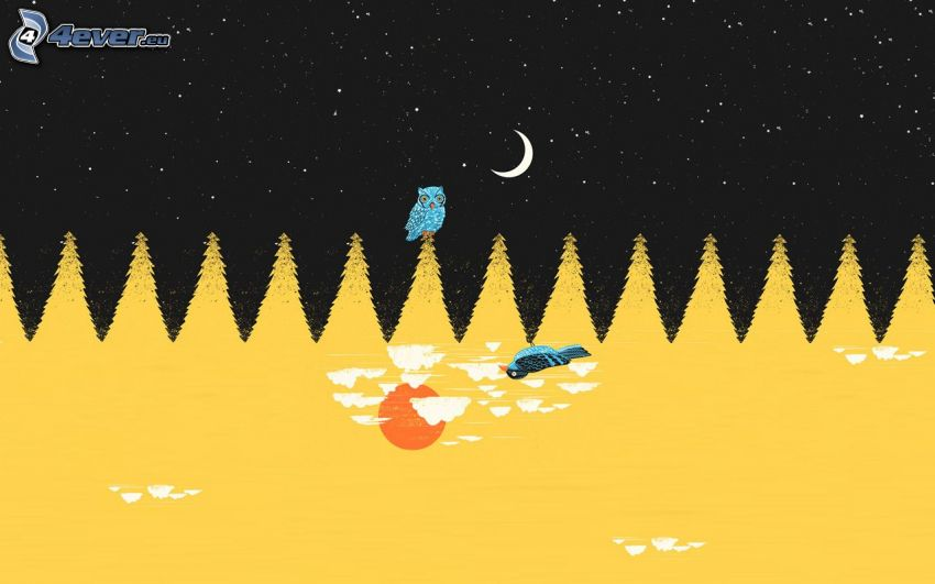 nächtliche Landschaft, Eule, Bäume, Nachthimmel