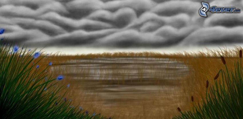Pfütze, Feld, Wolken