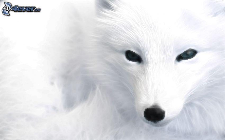 Polarfuchs, Cartoon-Fuchs