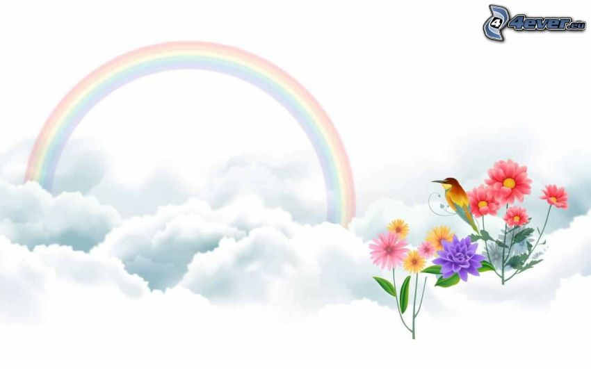 Regenbogen, Vögel, bunte Blumen
