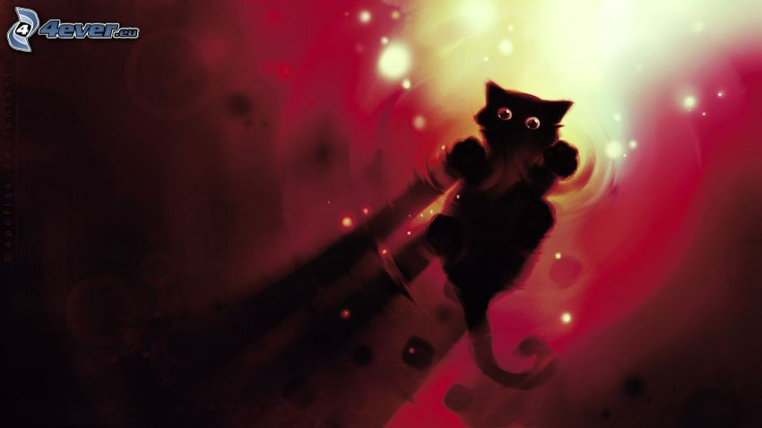 schwarze Katze, Wasseroberfläche