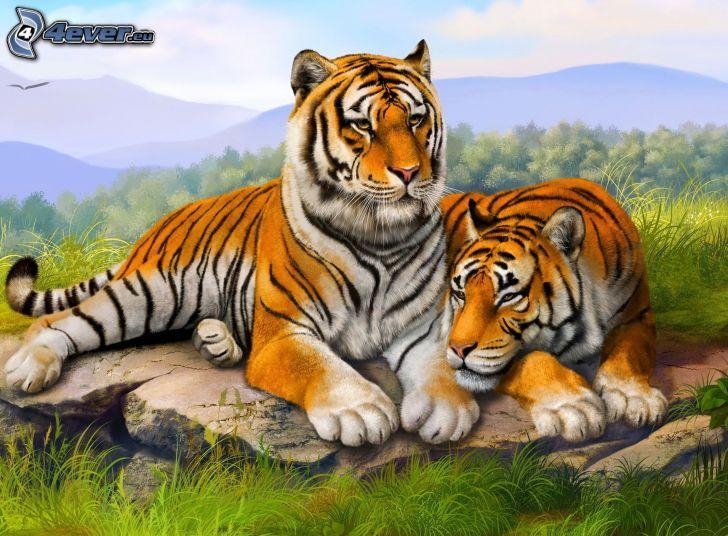 Tiger, Felsen, grünes Gras