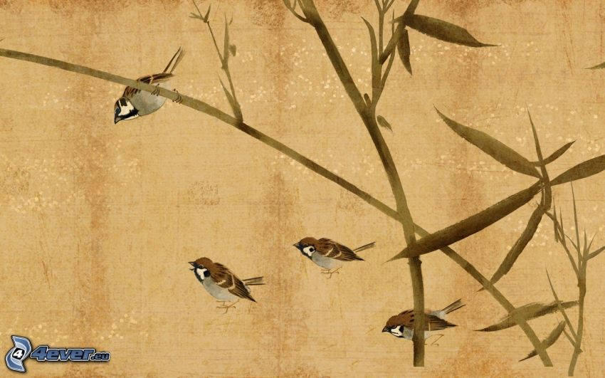 Vögel, Pflanzen
