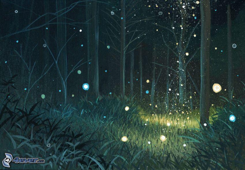 Wald, Dunkelheit, Gras