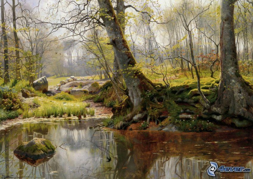 Wald, Fluss, Moos