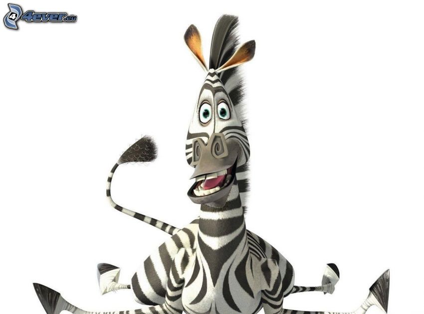 Zebra aus Madagaskar