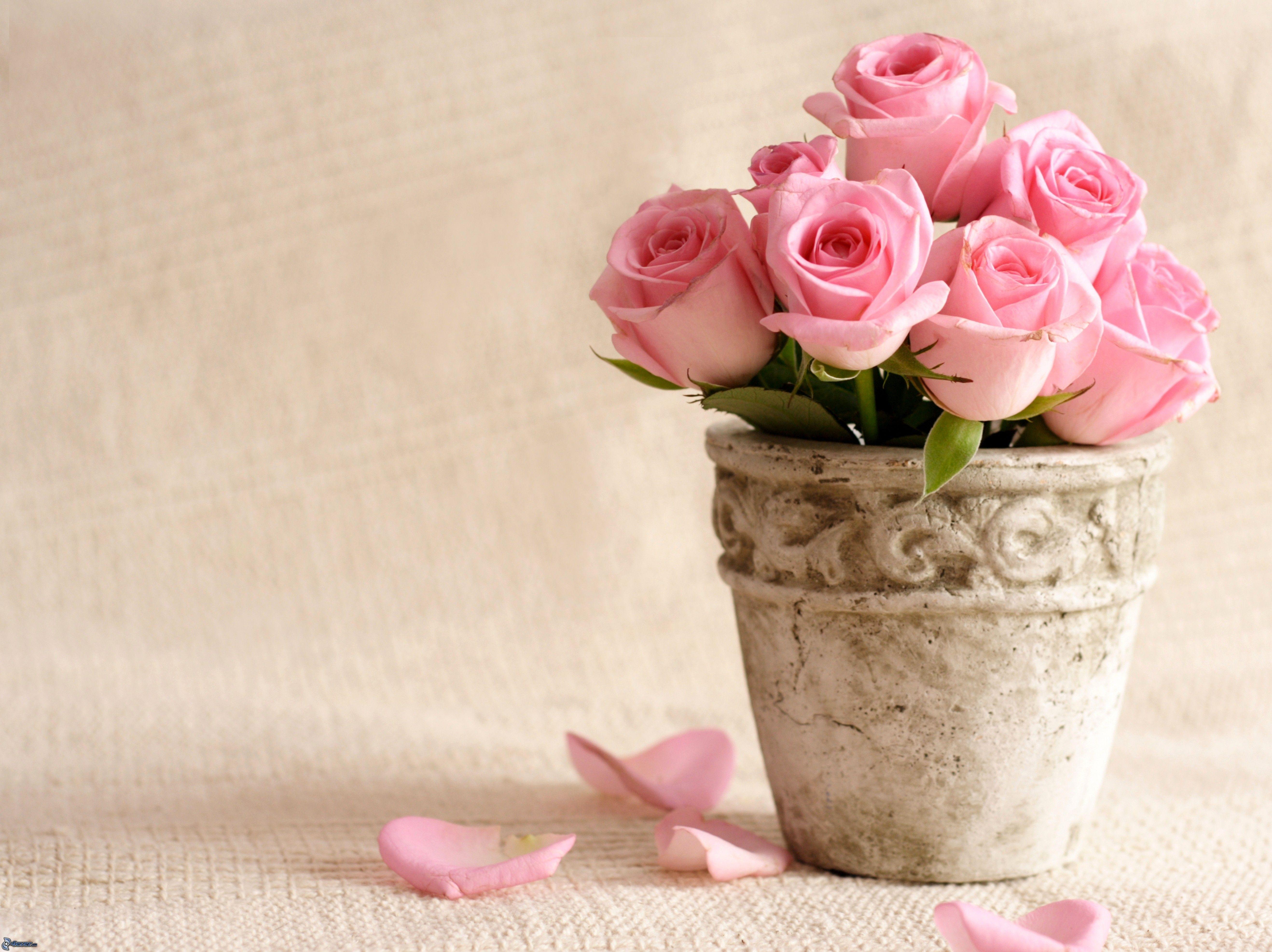 Vase Mit Blumen rosa blumen vase 206190 jpg