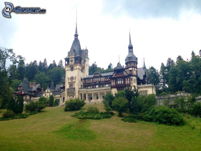 slottet Peles, skog, äng