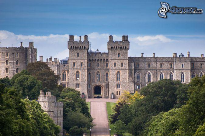 Windsor Castle, träd, park