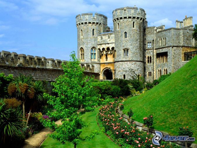 Windsor Castle, trädgård, grönska