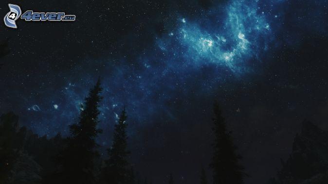 natthimmel, siluetter av träd, stjärnor