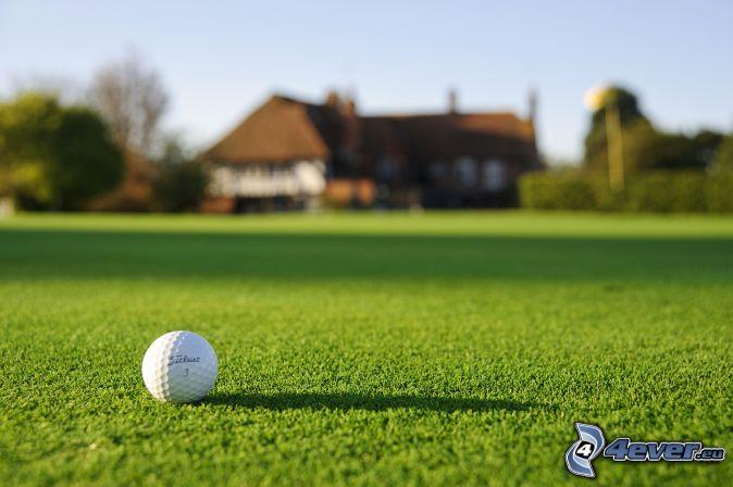 golfboll, gräsmatta, hus