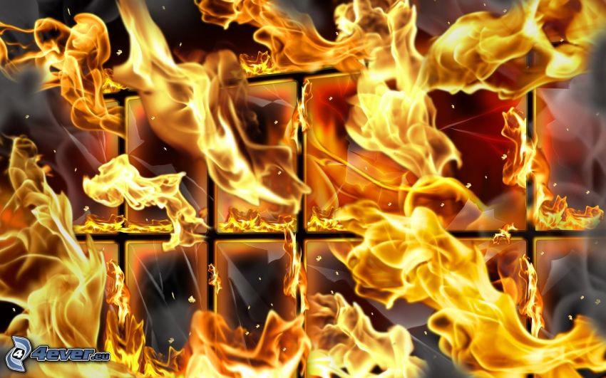 eld, fönster, glas