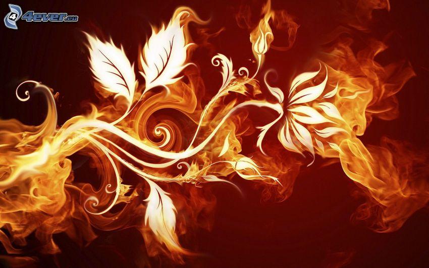 eldig blomma, gren, flammor