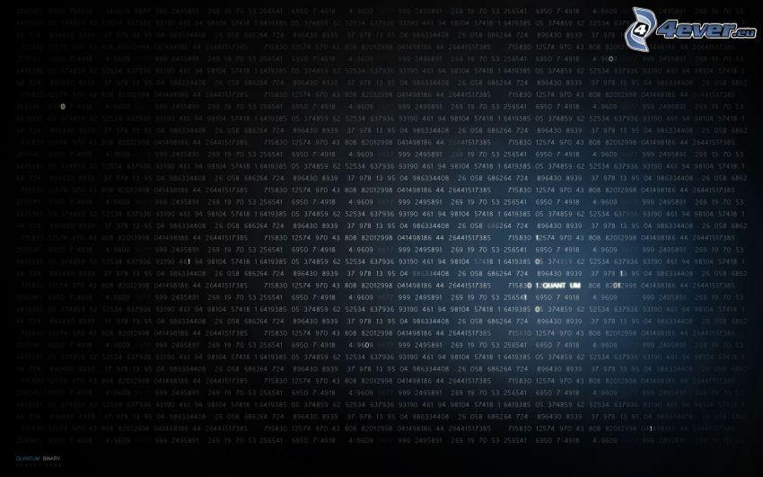 binär kod