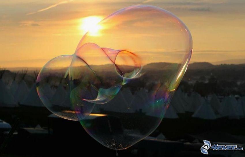 bubblor