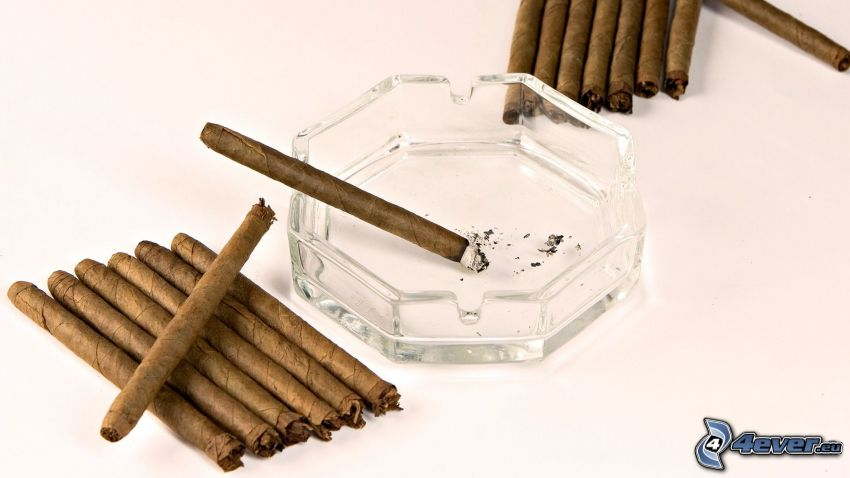 cigarrer, askkopp