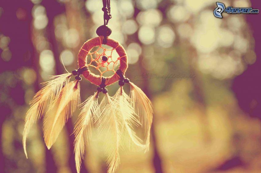 drömfångare, fjädrar