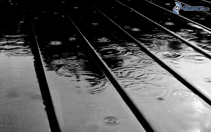droppar, regn
