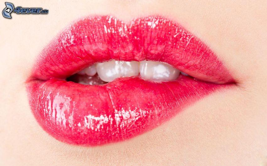 glansiga läppar, vita tänder