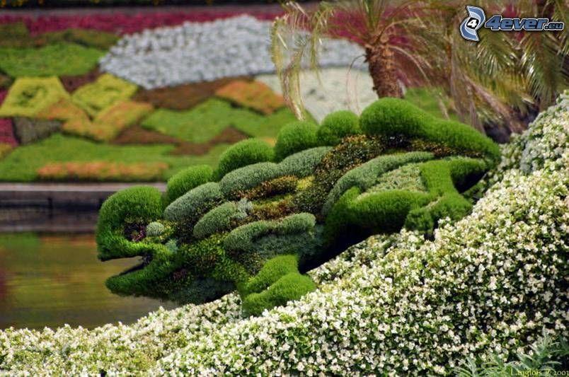 häckstaty, groda, trädgård
