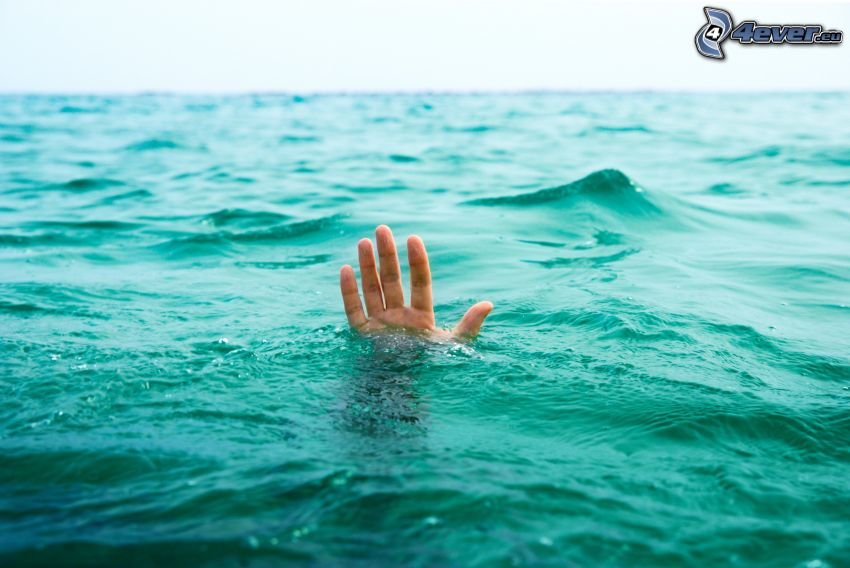 hand, hav