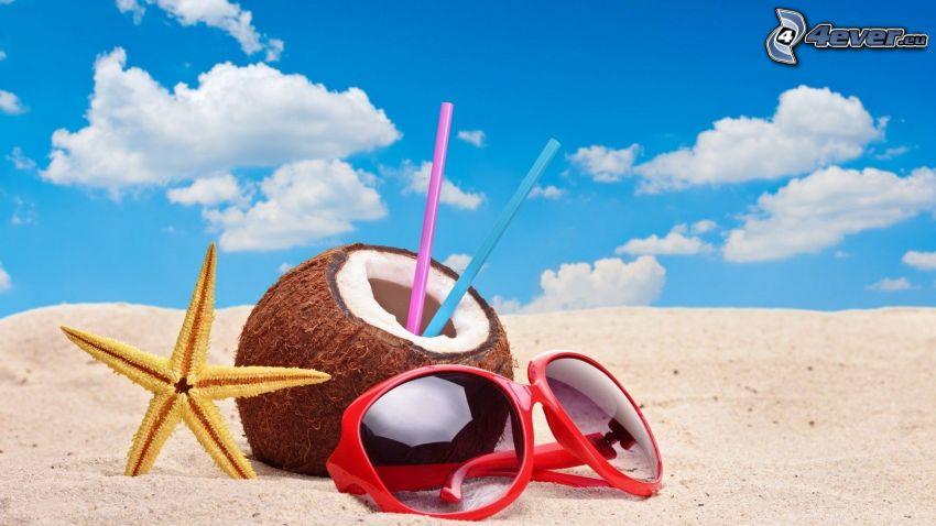 kokosnöt, sjöstjärna, solglasögon, strand