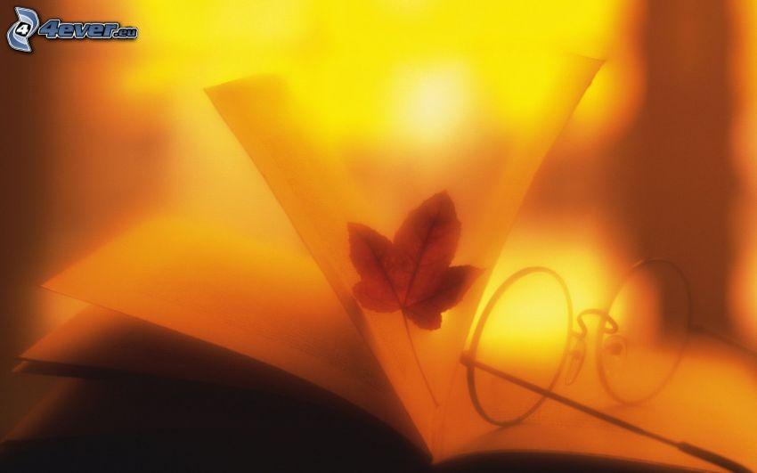 löv, glasögon, solnedgång, bok