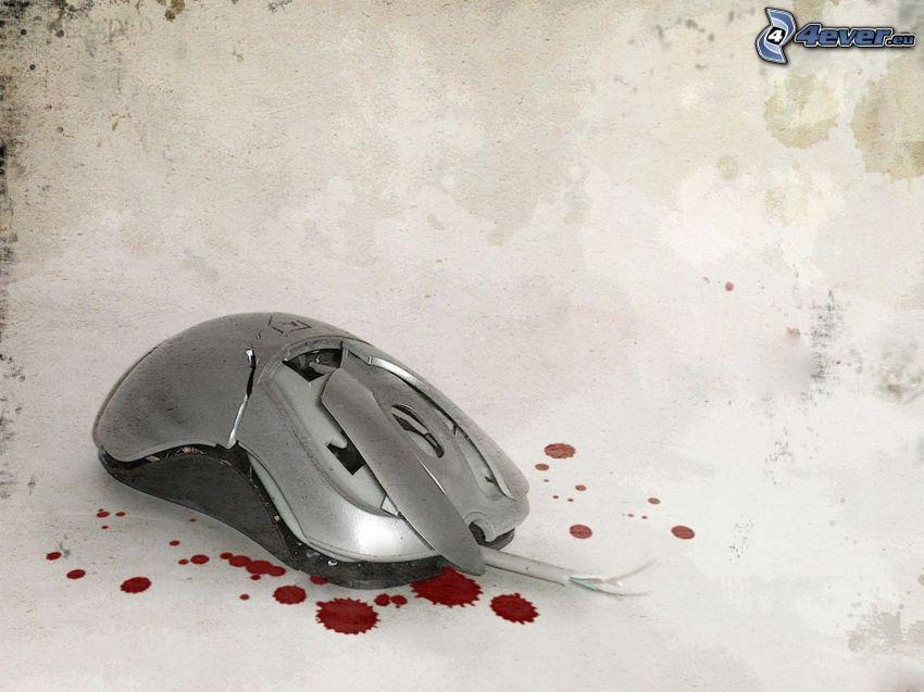 mus, droppar, blod