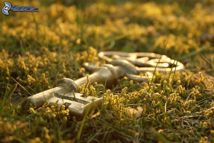 nyckel, gräs
