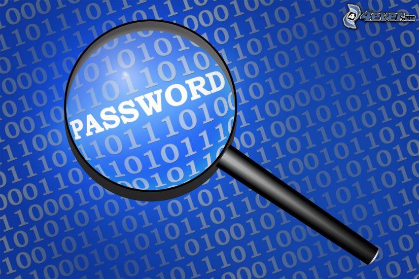 password, lösenord, förstoringsglas, binär kod