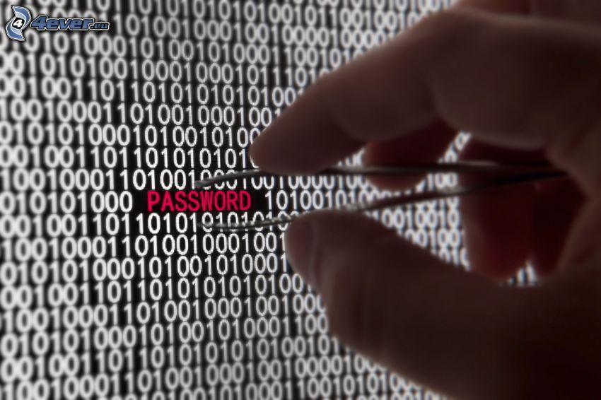 password, lösenord, hand, binär kod, pincett