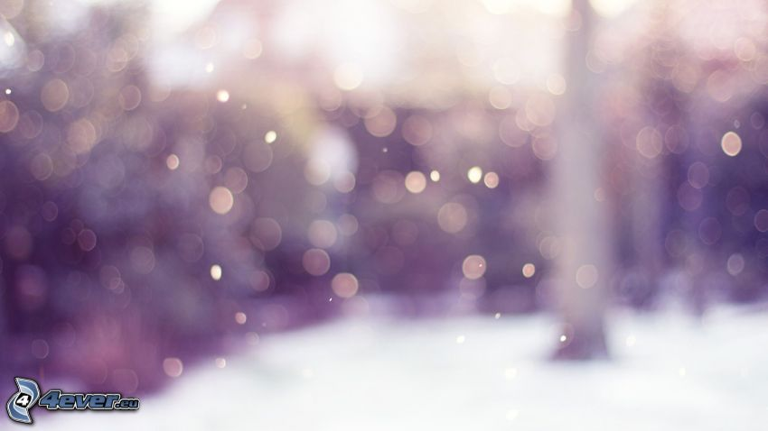 ringar, snö