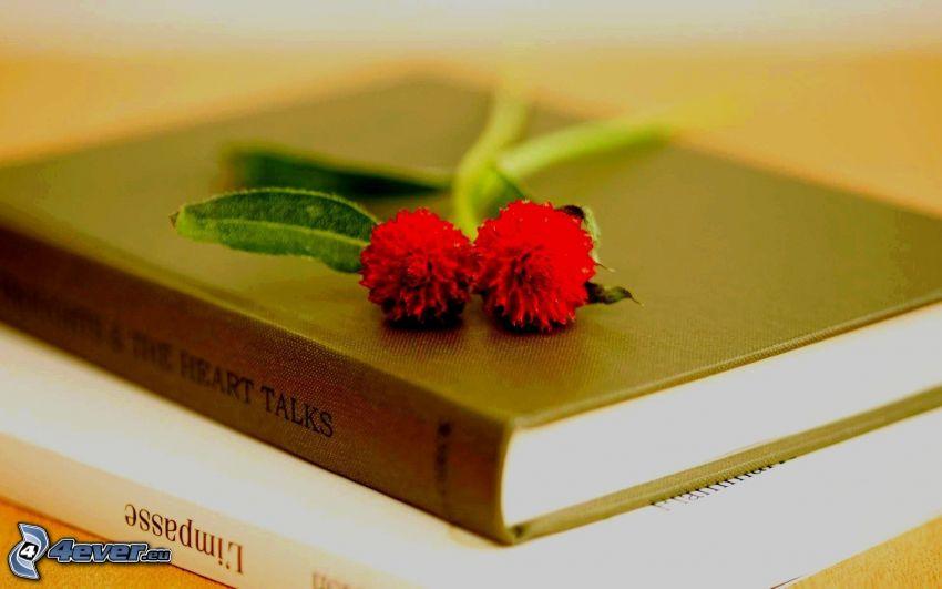 röda blommor, böcker