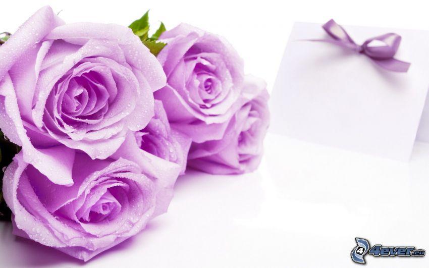 rosor, meddeande