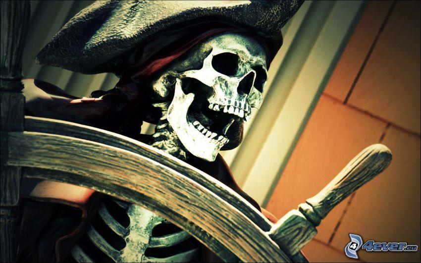 skelett, pirat