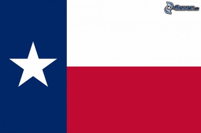 Texas, flagga